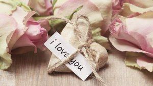 חיפושים אחר האהבה