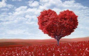 מבחני האהבה